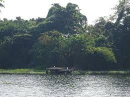 pathiramanal_island